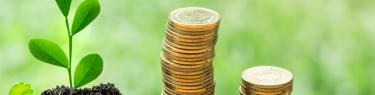 投資信託の分配金について徹底解説!